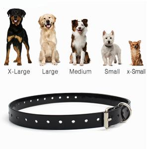 Amazon Best Seller Waterproof Electric Dog Shock Collar with Remote Two Collars  3