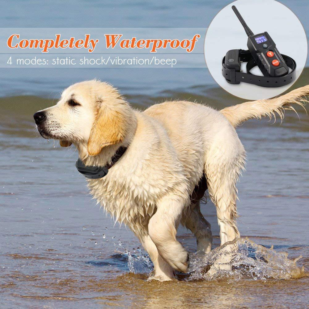 Amazon Best Selling Waterproof Electric Dog Shock Collar with Remote  3