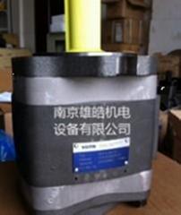 IPV5-25-101福伊特齿轮泵重磅销售