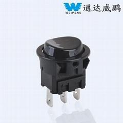 Rocker Switch with UL 250VAC