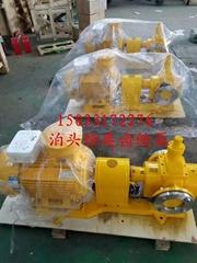 泊头恒奕ycb1.6/0.6齿轮油泵润滑油食用油行业专用