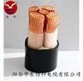 陽谷華東電纜YJV電力電纜 1