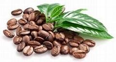 Arabica coffe beans