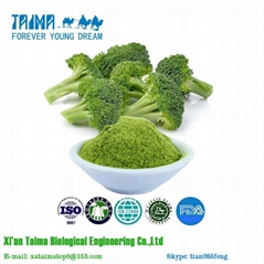 Vegetable Powder Freeze Dried Broccoli Powder