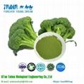 Vegetable Powder Freeze Dried Broccoli Powder 2
