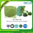 Vegetable Powder Freeze Dried Broccoli Powder 4