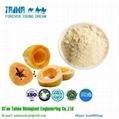 free sample 100% Natural Freeze Dried Fruit powder dried papaya powder