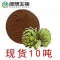 Artichoke Extract  5% 1