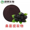 Mulberry Extract   25%