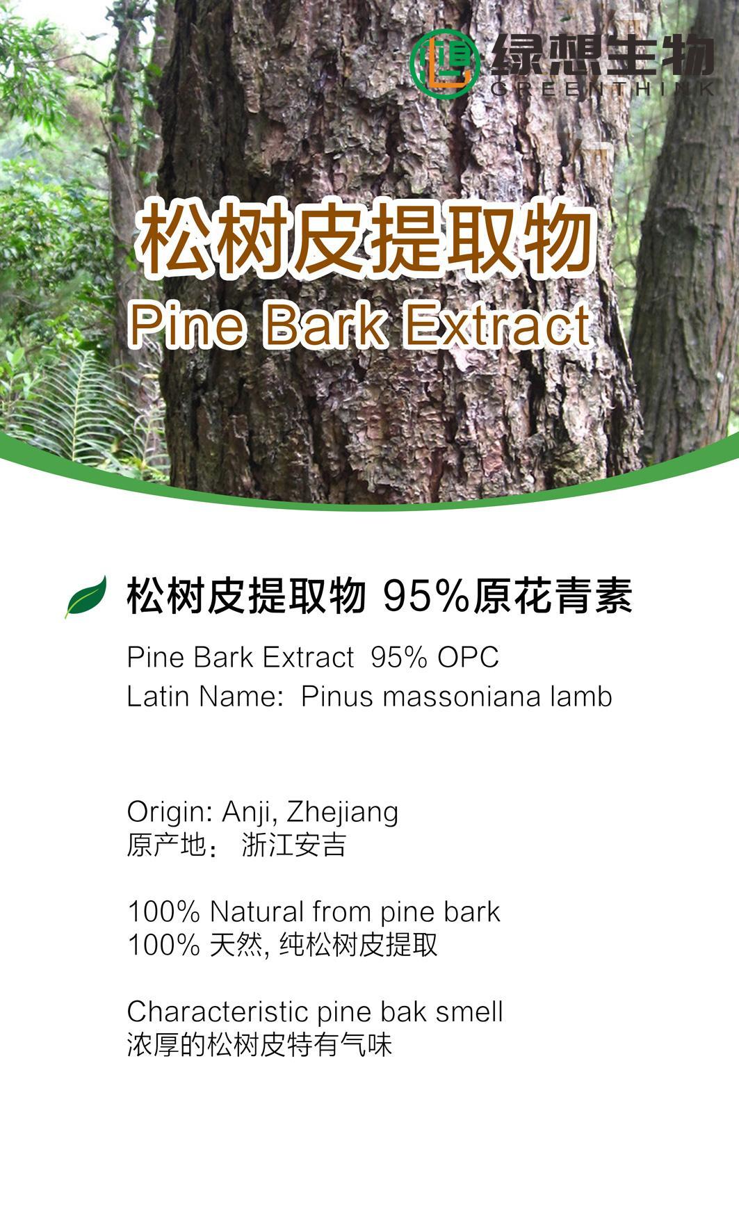 Pine Bark Extract  95% 2