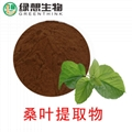 Mulberry Leaf Extract  4:1   10:1