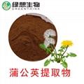 Dandelion Extract 4:1  10;1  3% Flavone