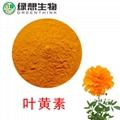 Lutein 、Marigold EXtract  5-80%  UV、HPLC