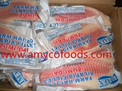 Frozen tilapia fillets high quality and very low price