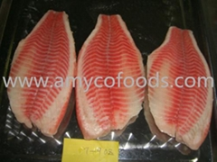Frozen tilapia fillets high quality and low in  price