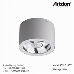 Artdon 2018 New design Surface Mounted Light AT-LS1037