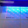 紫光防偽不干膠
