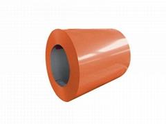 ASTM PREPAINTED GALVANIZED(PPGI) Coils Sheets