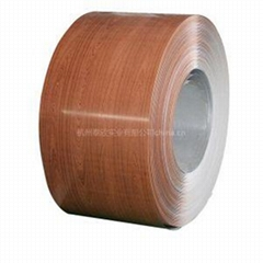 PPGI Colour Coated Coil