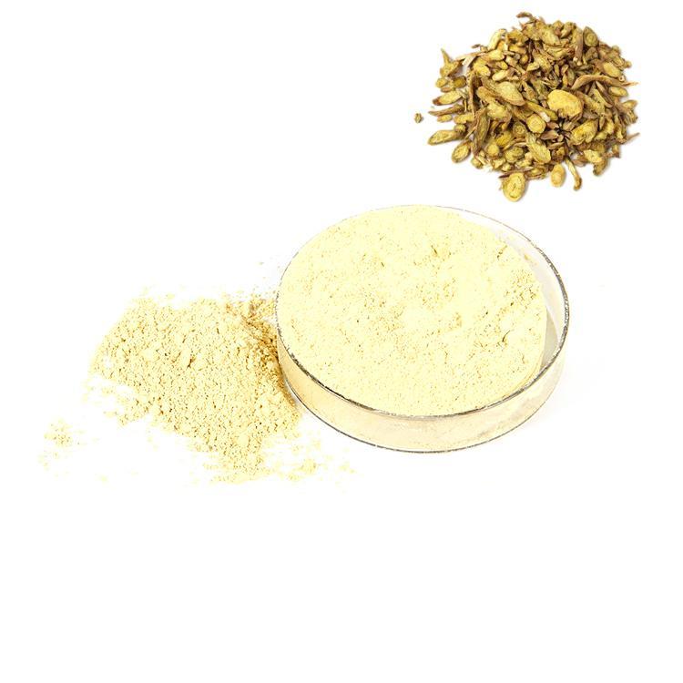 Ginkgo skullcap extract 2