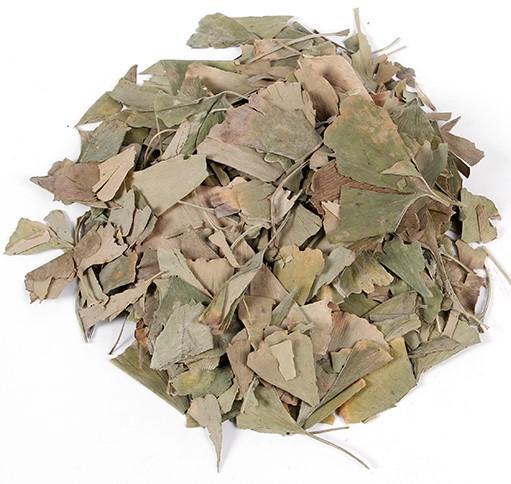 Ginkgo Leaves 1