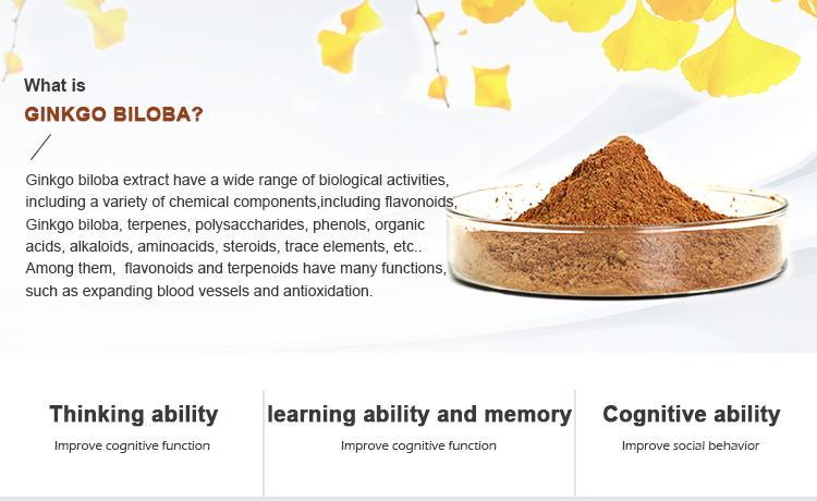 Ginkgo biloba extract 1