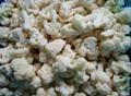 冷凍白花菜 3