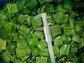frozen green pepper dice