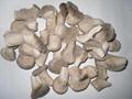 冷冻蘑菇 3