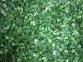 冷凍小蔥 2