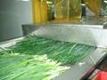 冷凍小蔥 3
