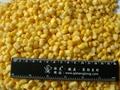 冷凍玉米粒 3