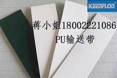 广州PVCPU输送带