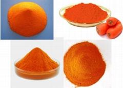 β-carotene powder 20%