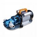 WCB portable gear pump oil transfer pump