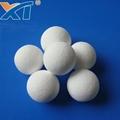 Denstone 99 High Quality Low Abrasion Support Media Ceramic Alumina Ball Tower P 5