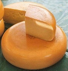 Cheddar cheese Mozzarella cheese Gouda