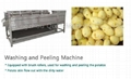 China supplier  full automatic potato chip machine of chips production  5