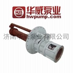 Melting Salt Lower Pump