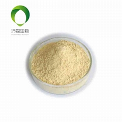 Soybean Lecithin Soy lecithin  Nutrition supplements