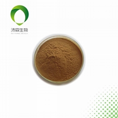 Cloth extract 10:1TLC Brown yellow powder