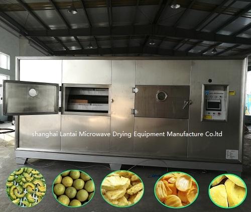 LANTAI microwave vacuum food dryer machine for fruit ,vegetable 3