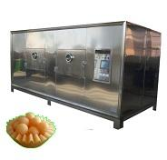 LANTAI Microwave Fruit And Vegetable Spices Dryer