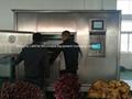 LANTAI Microwave Meat Dryer Machine