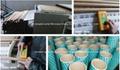 LANTAI Microwave Paper tube Drying