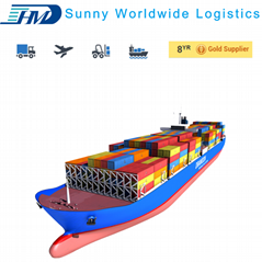 professional freight forwarder sea shipping from Shanghai to Antwerp