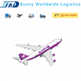 Professional service air freight