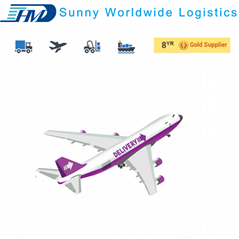Professional service air freight forwarder shipping from Shenzhen to USA DDU