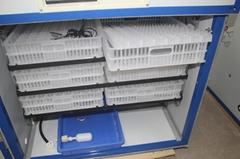 chicken pigeon reptile automatic digital incubator hatcher