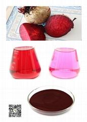 天然植物提取-甜菜红